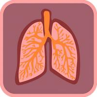 Respiratory therapist lungs